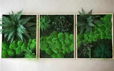 Moss design # umelecké diela